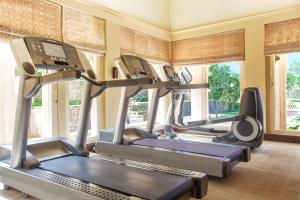 The fitness center and/or fitness facilities at The Oberoi Udaivilas Udaipur