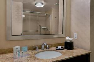 A bathroom at Hampton Inn & Suites Tampa Northwest/Oldsmar
