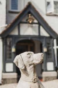 Pet or pets staying with guests at Merchants Manor Spa