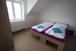 Postel nebo postele na pokoji v ubytování Vila Aneta