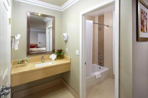 A bathroom at Eden Roc Inn & Suites near the Maingate