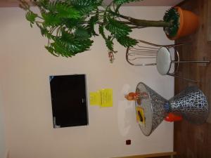 Телевизор и/или развлекательный центр в Hotel Victoriya