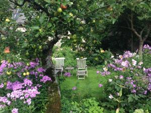 A garden outside All Seasons Bed & Breakfast