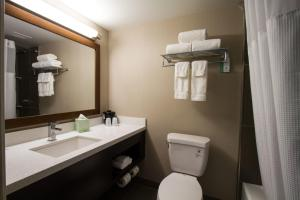 A bathroom at Holiday Inn Victorville, an IHG Hotel