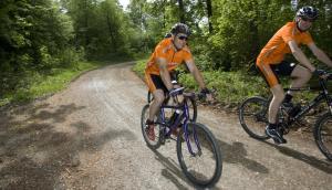 Radfahren an der Unterkunft Hotel Gasthof Rössle oder in der Nähe
