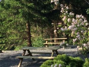 A garden outside Villa Nordhang