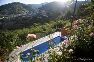 A view of the pool at Ambelikos Traditional Agrohotel or nearby