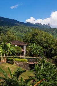 Общий вид на горы или вид на горы из курортного отеля