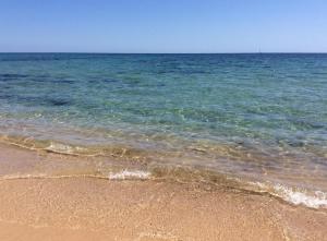 Spiaggia vicina o nei dintorni del campeggio