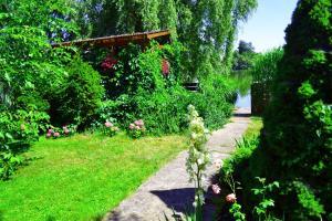 Zahrada ubytování Dům Avalon