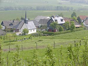 Blick auf Ferienwohnung Meisenthal nähe Nürburgring aus der Vogelperspektive