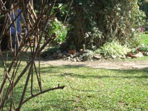 A garden outside Hosteria Pascana