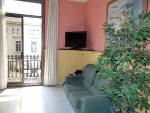 A television and/or entertainment center at Hostal Nuevo Colon