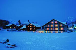 Hotel Fluematte im Winter