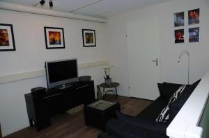 Een TV en/of entertainmentcenter bij Gastenappartement De Bergpoort