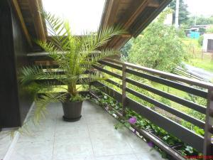 Balkón nebo terasa v ubytování Privat Apartma Ulrych