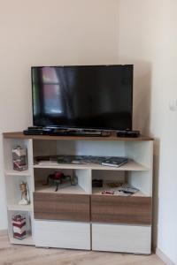 Televízia a/alebo spoločenská miestnosť v ubytovaní Apartment Diana