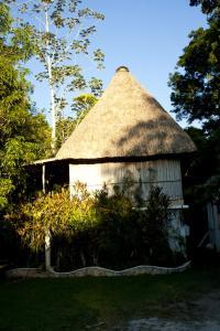 A garden outside Hotel Jaguar Inn Tikal