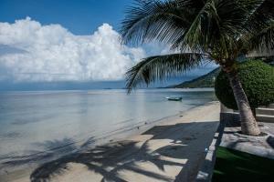 Uma praia em ou perto do resort