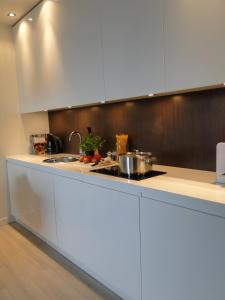 Kuchnia lub aneks kuchenny w obiekcie Platinum Residence