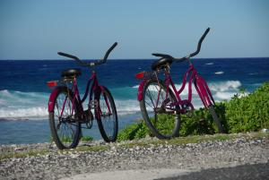 Biking at or in the surroundings of Miki Miki Lodge