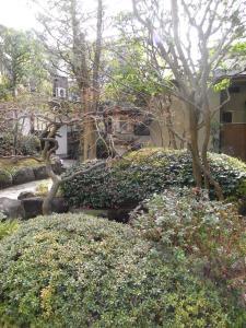 A garden outside Ryokan Matsushima