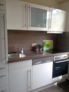 A kitchen or kitchenette at Apartmenthaus Villa Lindenbühl