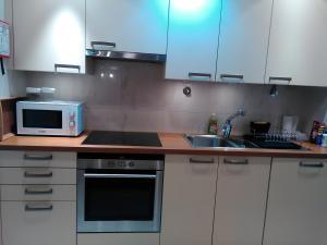 A kitchen or kitchenette at Apartment Arriaga