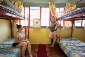 A bunk bed or bunk beds in a room at Murwillumbah Guesthouse YHA