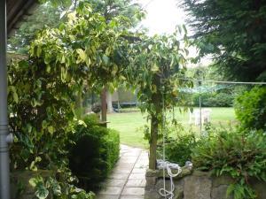 A garden outside Hosefield Bed and Breakfast