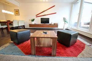 TV a/nebo společenská místnost v ubytování Appartements Tamino by Schladming-Appartements
