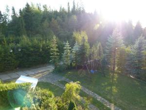 Widok na basen w obiekcie Willa Podhale lub jego pobliżu