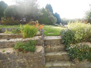 A garden outside Fitzgerald's Farmhouse Accommodation