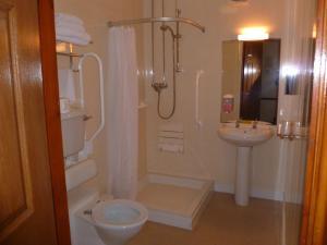 A bathroom at Tafarn Y Rhos