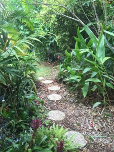 A garden outside Sunshine Coast Tropical Getaway
