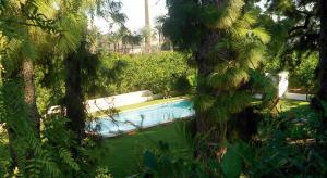 Vista de la piscina de El Sequer Casa Rural o alrededores