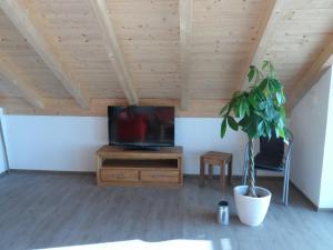 TV/Unterhaltungsangebot in der Unterkunft Ferienwohnungen Hopfensee