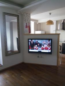 Телевизор и/или развлекательный центр в Apartment Zvezdova