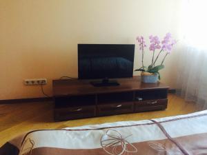 Телевизор и/или развлекательный центр в Apartamenty Na Prosveshcheniya 35