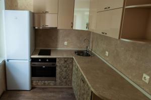 Кухня или мини-кухня в Апартаменты-студио «На Печорской»