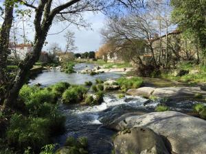 ホテルの近くで見られる自然の景観