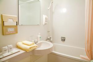 A bathroom at Hotel Folkloro Kakunodate