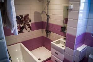 A bathroom at Samuil Apartment