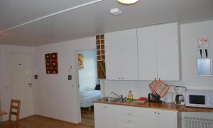 A kitchen or kitchenette at Puffin Apartment Víkurbraut