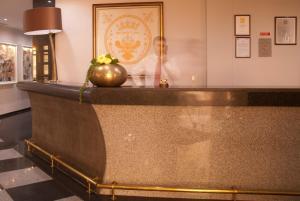 The lobby or reception area at Hotel Rainha D. Amélia, Arts & Leisure