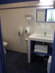A bathroom at Hôtel le Chalet Fleuri