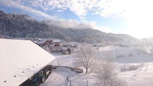 Apartment Vrtacnik зимой