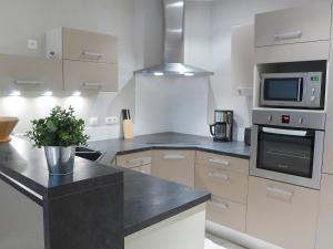 A kitchen or kitchenette at Apartment Les Cerfs