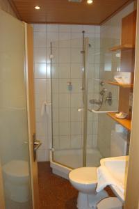 A bathroom at Hotel Restaurant zur Windmühle