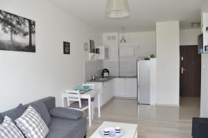 Kuchnia lub aneks kuchenny w obiekcie Apartament BAIGO